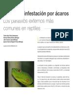 Acariasis, Infestacion Por Acaros -Los Parasitos Externos Mas Comunes en Reptiles