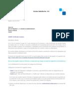 Circular Subsidio 119 (1) (1)