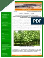 Cultivo de Teca_bioestimulación de crecimiento y protección.pdf