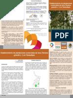 Establecimiento de Plantaciones Comerciales de Teca
