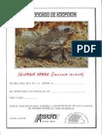 Certificado de Adopcion de Iguana Verde