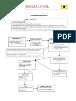 Microsoft Word - Esquema Juicio Oral.pdf
