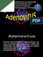 Adenovirus y Papilomavirus