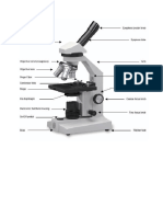 teacher copy microscope worksheet
