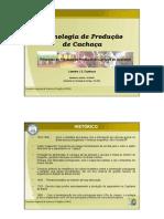 Tecnologia de Produção de Cachaça.pdf