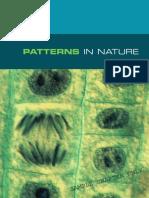 Biology_in_Focus_Prelim_Sample_Chapter.pdf