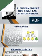 5-ENFERMEDADES-QUE-SIGAN-LAS-LEYES-DE-MENDEL-1.pptx