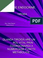 glandeendocrine_tiroida