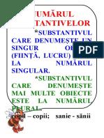 numărul substantivelor.doc