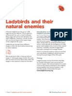 Activity ladybird parasites.pdf