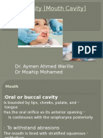 Oral Cavity Modified