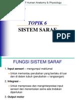 T06_SistemSaraf