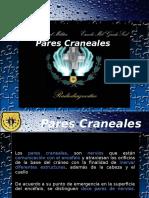 Pares Craneales2