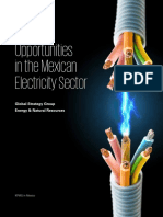 Opportunities in the Mexican Electricity Sector