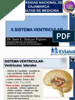 5-a-SistemaVentricular-2016.pdf