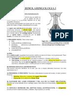 Otorrinolaringologia i