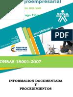 Expo Documentos Ohsas 18001 - 2007