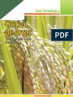 Guía Técnica de ARROZ FINAL.pdf