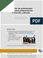 8. Inclusion de Profesionales Pertenecientes a Minoria-2