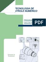 Aula5_Programacao_Parte1.pdf