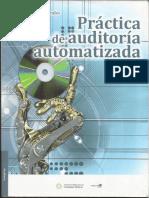 Practica de Auditoria Automatizada.pdf