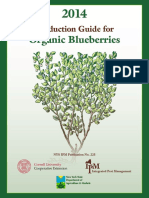 blueberry[1].pdf