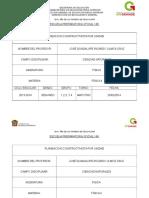Nueva Planeación de Física II 2014
