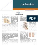 1 Facet Joint Syndrome