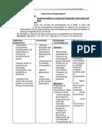 Estructura Programática SOCIOPOLITICA