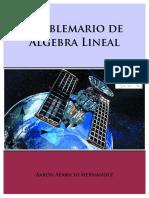 PROBLEMARIO-DE-ALGEBRA-LINEAL-Aaron-Aparicio-Hernandez_2.pdf