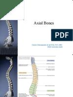 04.Tulang Axial