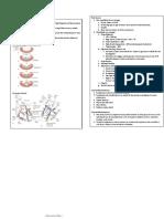 Cardiovascular-I.pdf