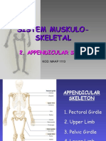 Appendicular Skeleton 10 (2)