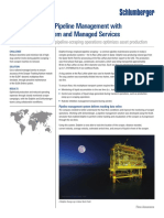 cs_dolphin_managed_services_olga.pdf