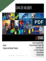 Regra_de_Neuber.pdf