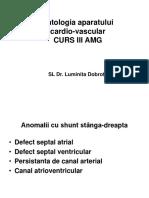 Patologia Aparatului Cardiovascular