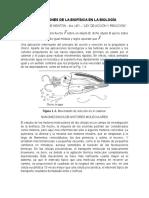 Ejemplos de aplicaciones de La Biofísica en La Biología