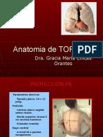 Anatomiadetorax 091207203941 Phpapp02 (1)