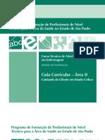 GUIA AREA II.pdf