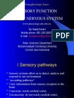 05b-sensory function.ppt