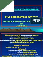 Sistem Somatosensorik - B Wibowo