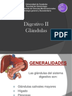 Teorìa Digestivo II (1)