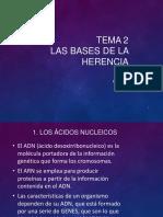 Genetica Molecular PRIMERA PARTE