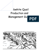 Bobwhite Quail Production and Management Guide
