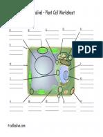 PlantCellModel.pdf