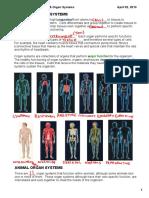 Organs and Organ Systems P1