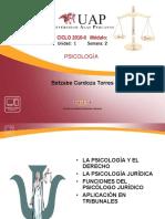 La Psicologia Juridica