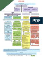 Classificacao Risco Manejo Paciente Dengue