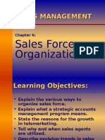 Sales Management (Sales Force Structure)