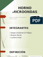 HORNO MICROONDAS.pptx